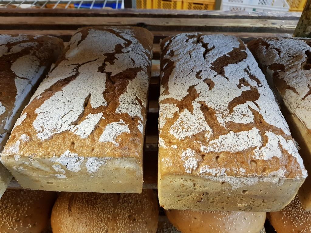 Chleb-Klasztorny